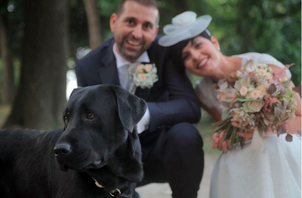 matrimonio con il cane labrador