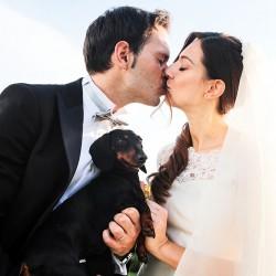 matrimonio-con-cane-bassotto