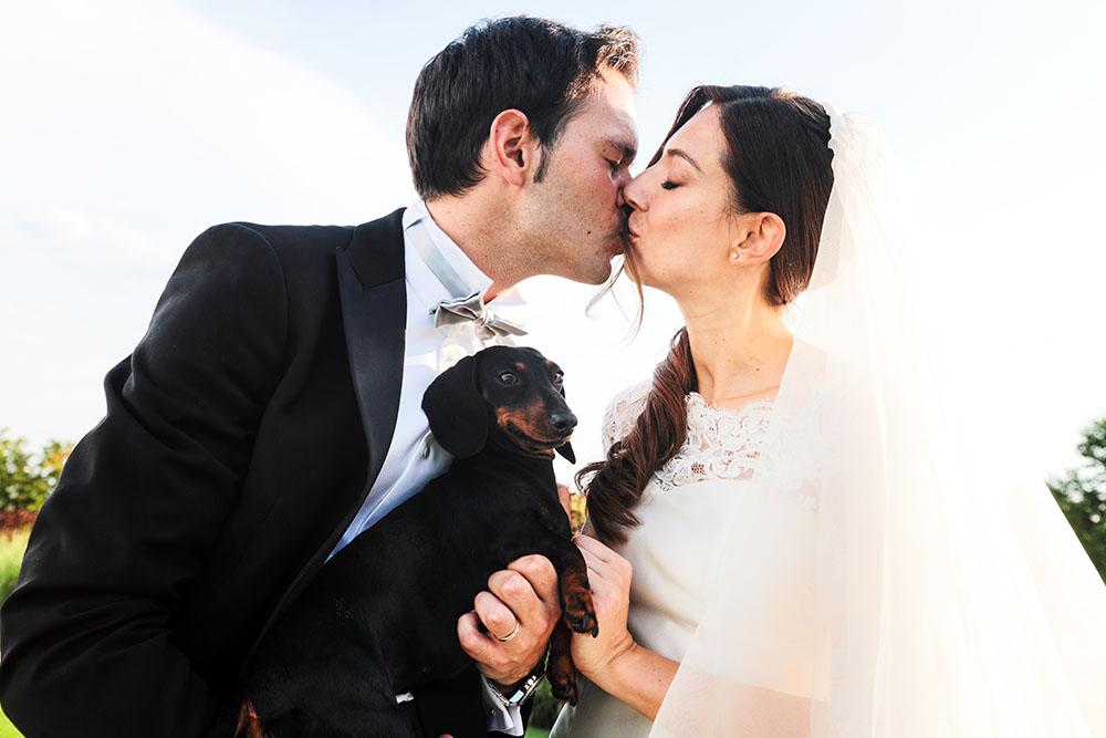 matrimonio con il cane bassotto